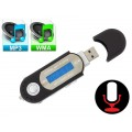 MP3 grotuvas+USB LCD ekranas microSD AK301
