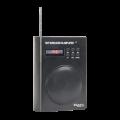Kolonėlė su mikrofonu Ibiza Sound Port 3